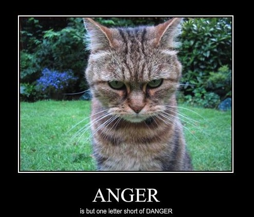 anger is dangerous Are you still angry at someone and what do you feelyou know what is your feeling when you are angry at someone i know that and feel in the sameanger is the most dangerous of all emotionsif you are so angry at someone,you almost do something bad at themyou can see,some people killed,fight it is.